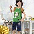 Erkek Çocuk Kapri Takım HMD 5374
