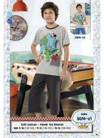 Hmd Erkek Çocuk Dinazor Baskılı Kapri Takımı 5014
