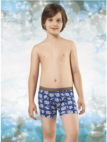 Anıt Desenli Çocuk Boxer 4761