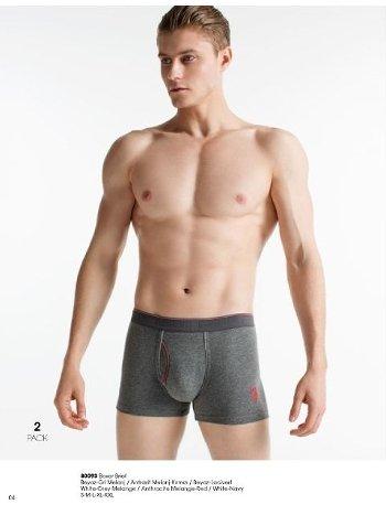 Erkek Boxer 2 Li Paket US. POLO ASSN. 80093