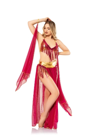 Kadın Dansöz Kostüm Vip Madame VIP-2776-FUŞYA